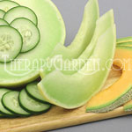 Fragrance Oil Cucumber Melon