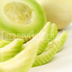 Fragrance Oil Honeydew Melon