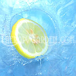 Fragrance Oil Lemon Splash